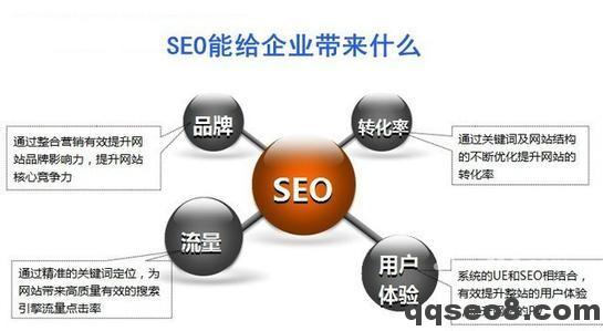 琪琪SEO企业网站优化正确工作流程的图片 - 2