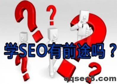 琪琪SEO为您深入解析【seo一个月能赚多少钱】?的图片 - 3